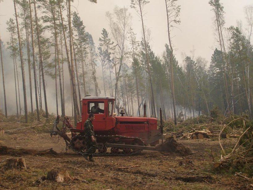 Три лесных пожара произошло в Приангарье 22 апреля