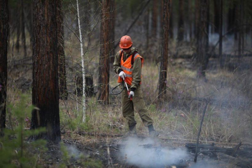Один действующий и три локализованных пожара зарегистрированы в Иркутской области на утро 14 мая