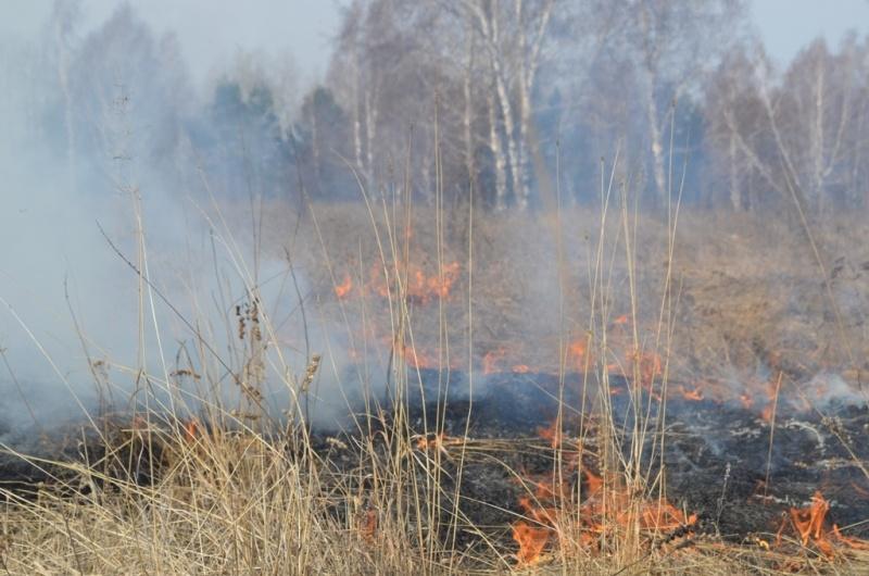 18 лесных пожаров действует в Иркутской области на утро 13 августа